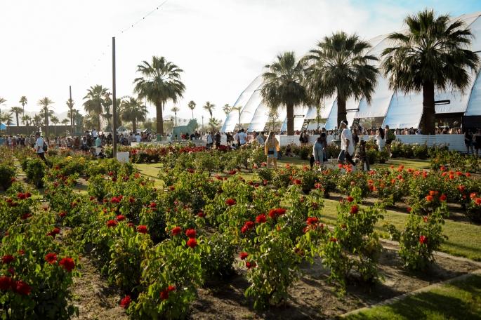 Odyssey Designs Coachella 2017-82